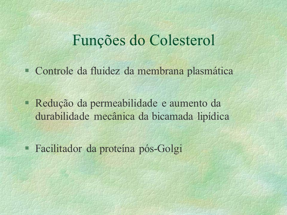 Funções do Colesterol Controle da fluidez da membrana plasmática
