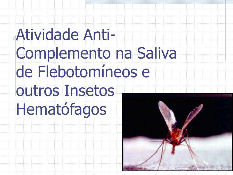 Atividade Anti-Complemento na Saliva de Flebotomíneos e outros Insetos Hematófagos