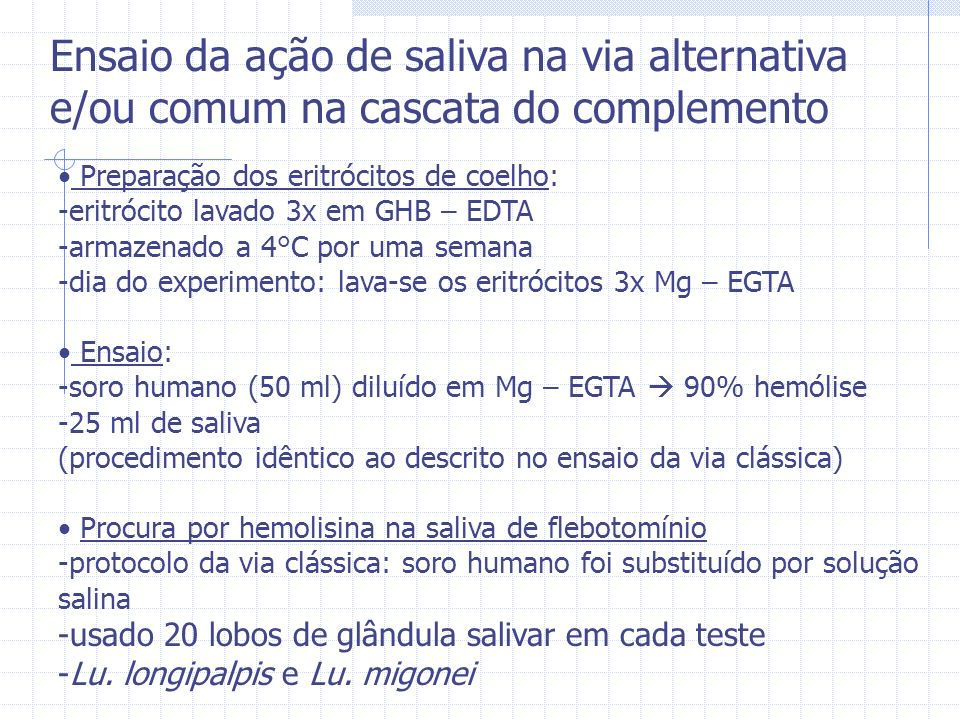 Ensaio da ação de saliva na via alternativa e/ou comum na cascata do complemento