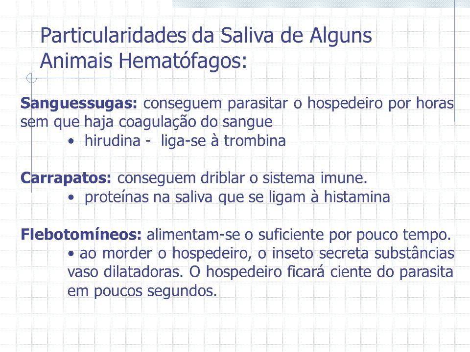 Particularidades da Saliva de Alguns Animais Hematófagos: