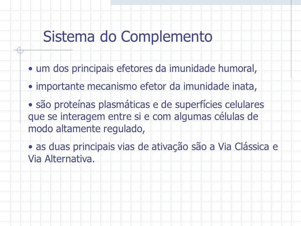 Sistema do Complemento