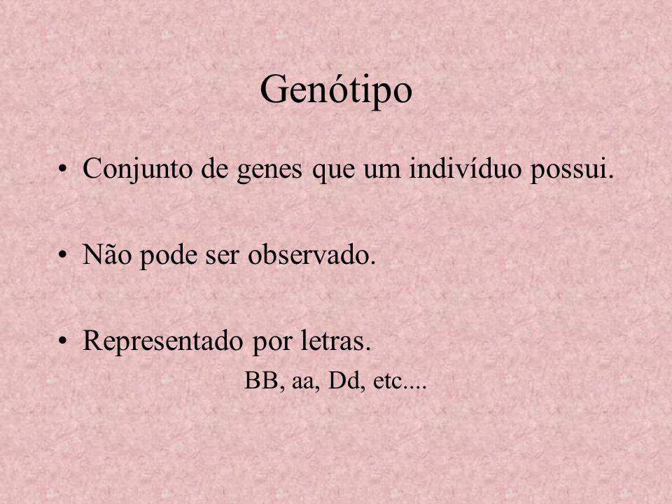 Genótipo Conjunto de genes que um indivíduo possui.