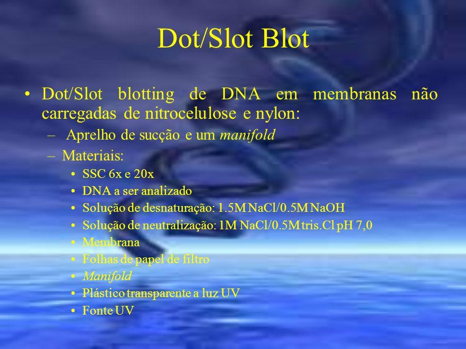 Dot/Slot Blot Dot/Slot blotting de DNA em membranas não carregadas de nitrocelulose e nylon: Aprelho de sucção e um manifold.