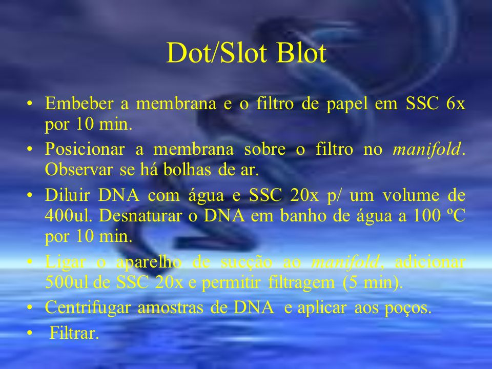 Dot/Slot Blot Embeber a membrana e o filtro de papel em SSC 6x por 10 min.