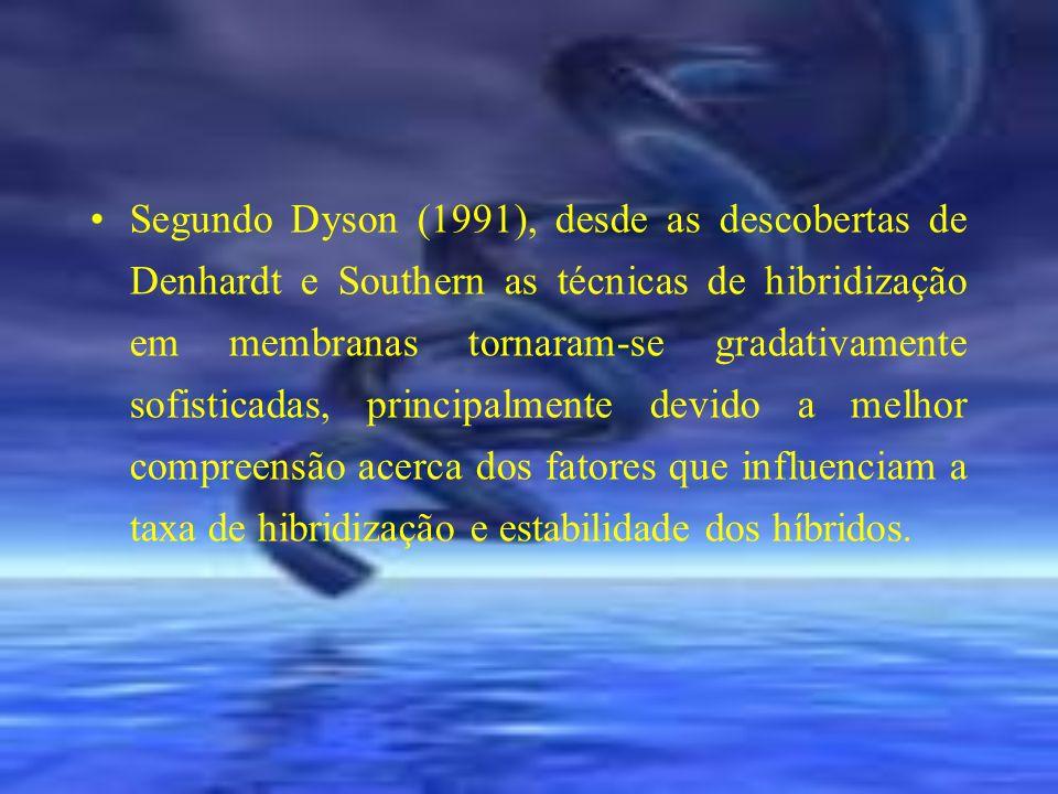 Segundo Dyson (1991), desde as descobertas de Denhardt e Southern as técnicas de hibridização em membranas tornaram-se gradativamente sofisticadas, principalmente devido a melhor compreensão acerca dos fatores que influenciam a taxa de hibridização e estabilidade dos híbridos.