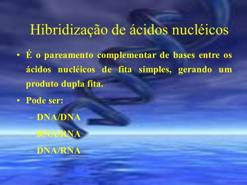 Hibridização de ácidos nucléicos