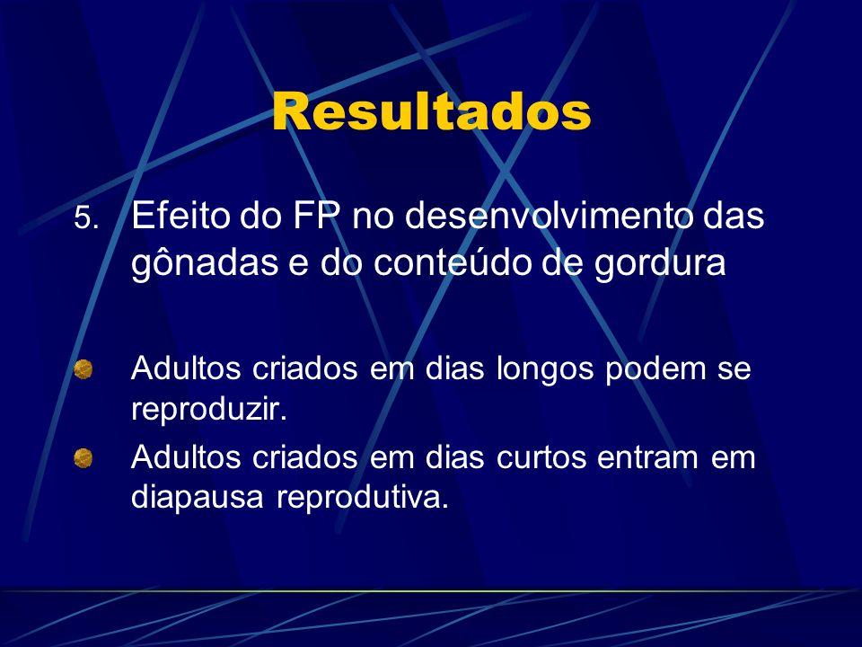 Resultados Efeito do FP no desenvolvimento das gônadas e do conteúdo de gordura. Adultos criados em dias longos podem se reproduzir.