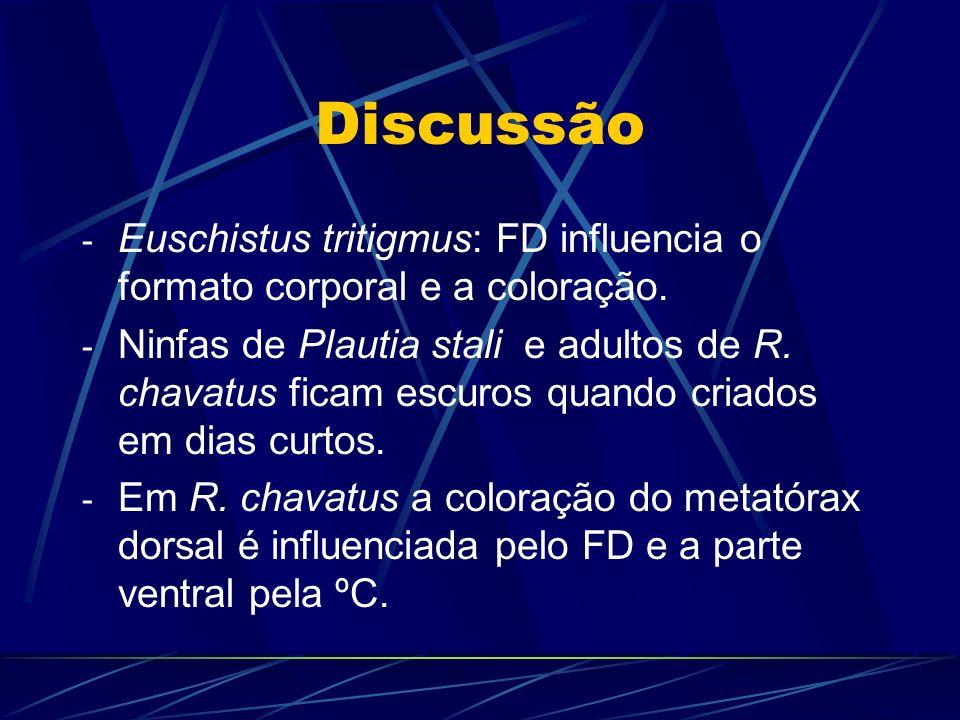 DiscussãoEuschistus tritigmus: FD influencia o formato corporal e a coloração.