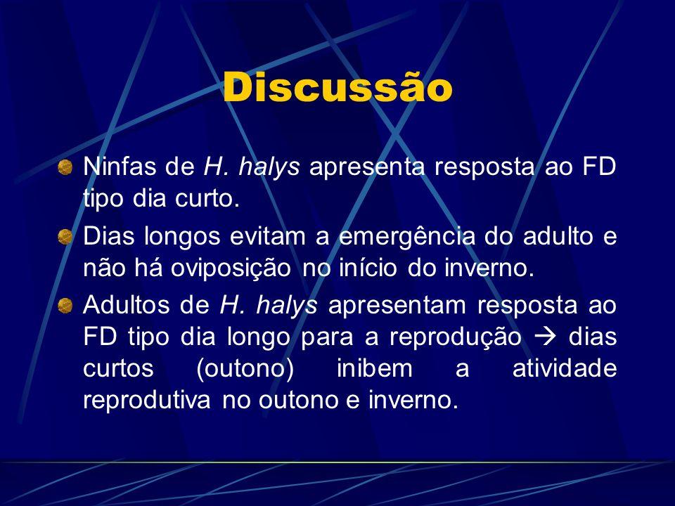 Discussão Ninfas de H. halys apresenta resposta ao FD tipo dia curto.