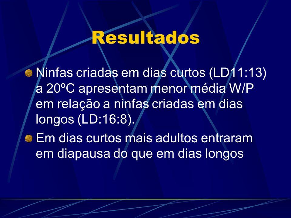 Resultados Ninfas criadas em dias curtos (LD11:13) a 20ºC apresentam menor média W/P em relação a ninfas criadas em dias longos (LD:16:8).