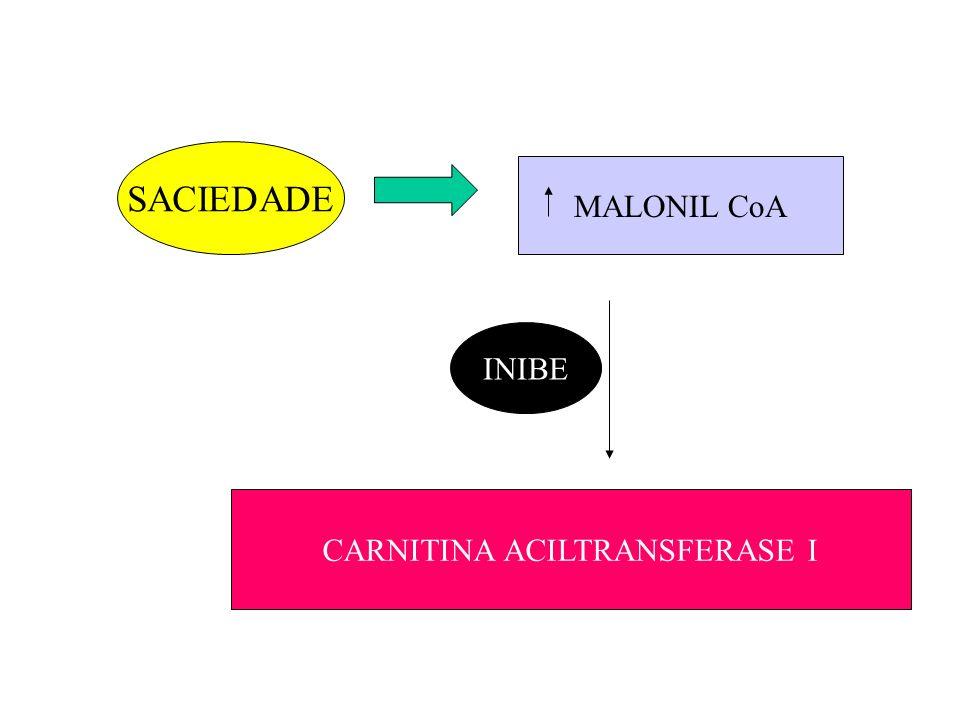 CARNITINA ACILTRANSFERASE I