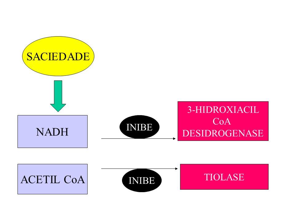 SACIEDADE NADH ACETIL CoA 3-HIDROXIACIL CoA DESIDROGENASE INIBE