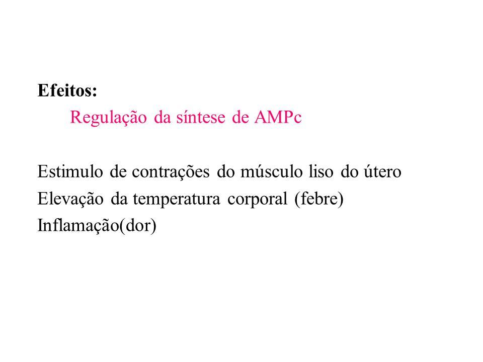 Efeitos: Regulação da síntese de AMPc. Estimulo de contrações do músculo liso do útero. Elevação da temperatura corporal (febre)
