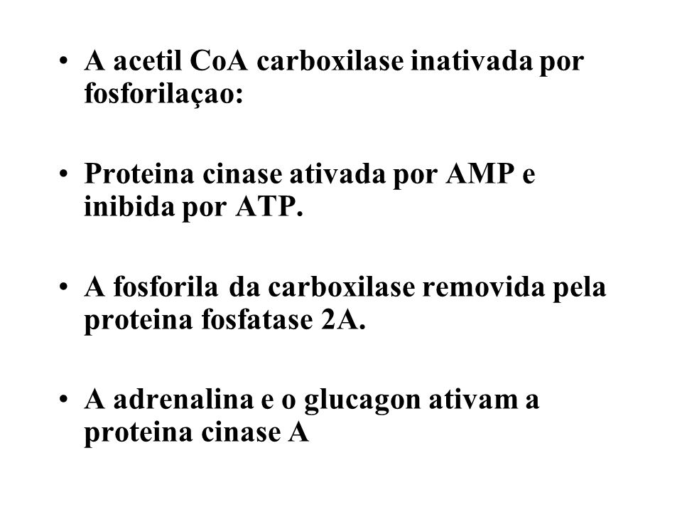 A acetil CoA carboxilase inativada por fosforilaçao: