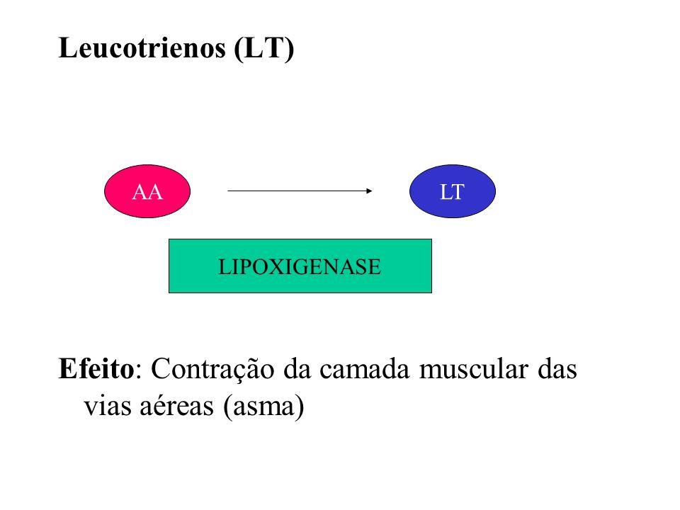 Efeito: Contração da camada muscular das vias aéreas (asma)