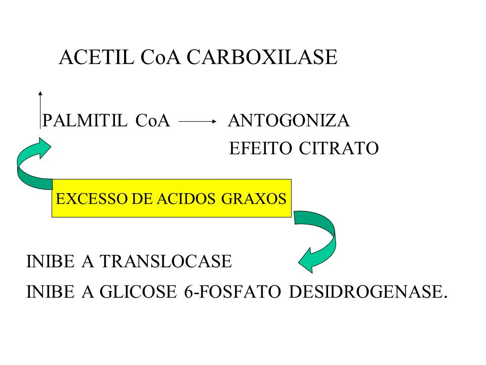 EXCESSO DE ACIDOS GRAXOS