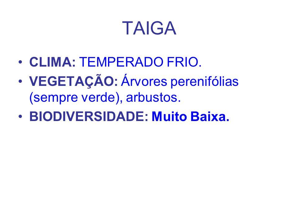 TAIGA CLIMA: TEMPERADO FRIO.