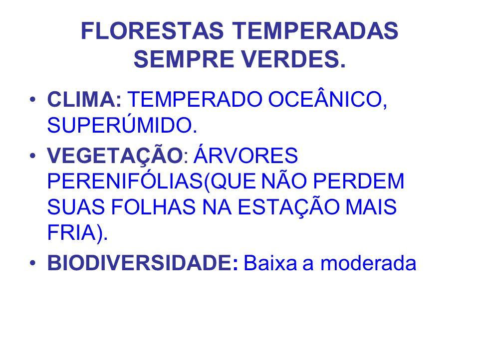 FLORESTAS TEMPERADAS SEMPRE VERDES.