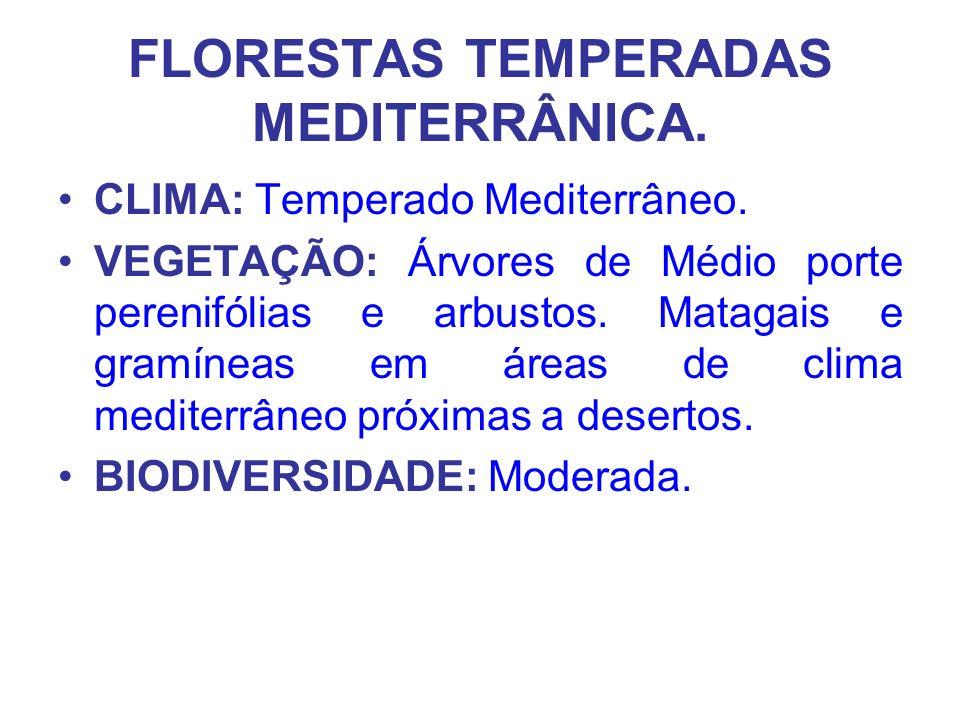 FLORESTAS TEMPERADAS MEDITERRÂNICA.