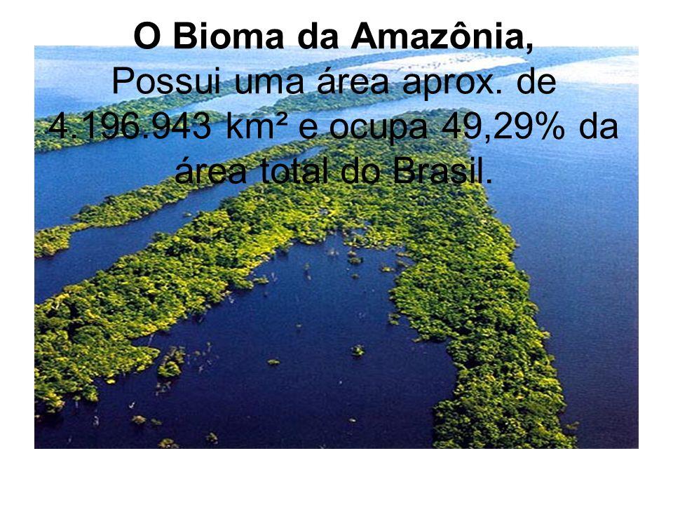 O Bioma da Amazônia, Possui uma área aprox. de 4. 196