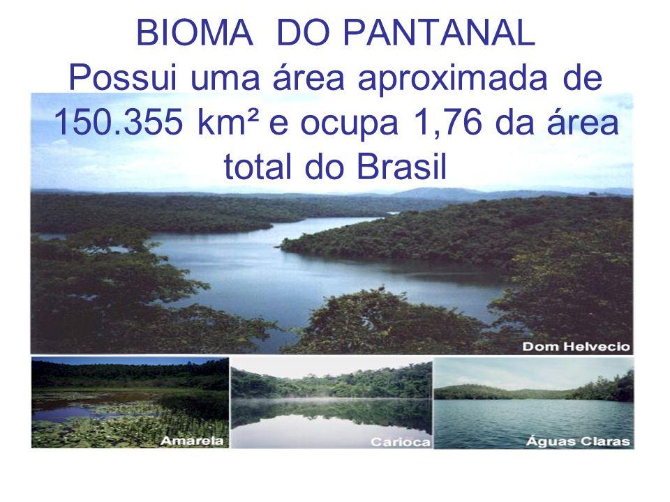 BIOMA DO PANTANAL Possui uma área aproximada de 150