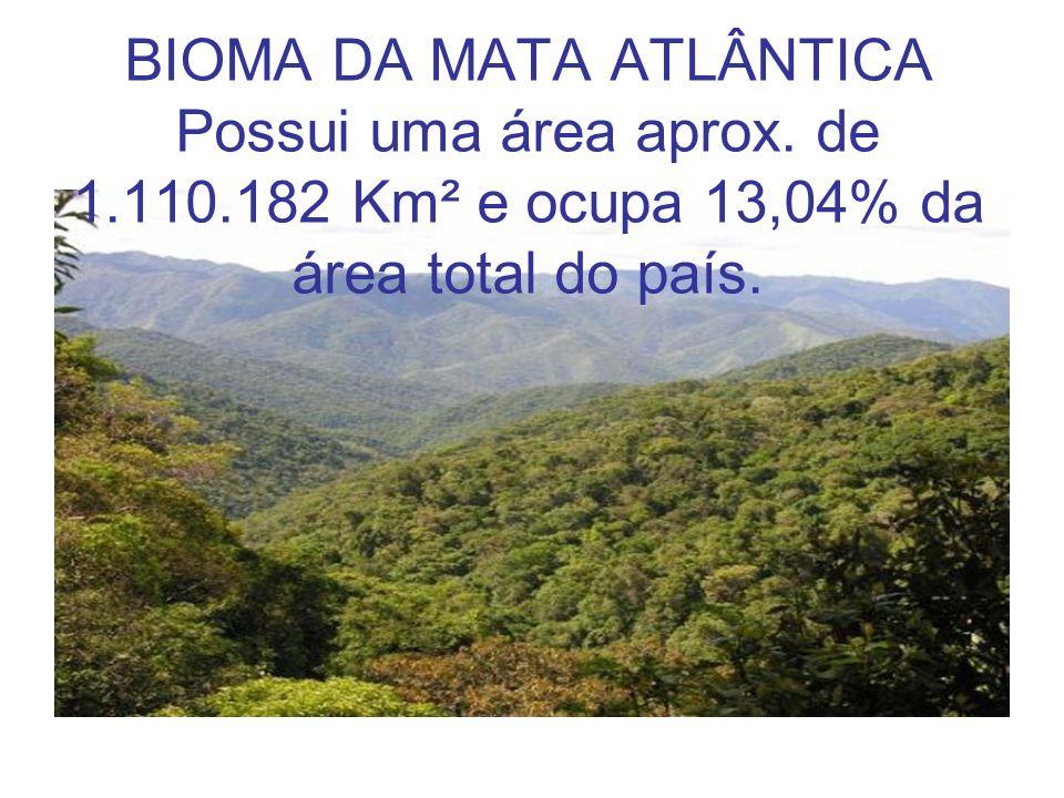 BIOMA DA MATA ATLÂNTICA Possui uma área aprox. de 1. 110