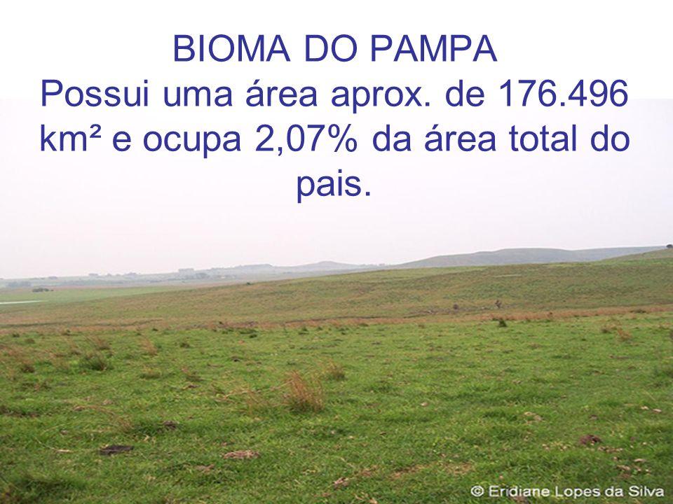 BIOMA DO PAMPA Possui uma área aprox. de 176