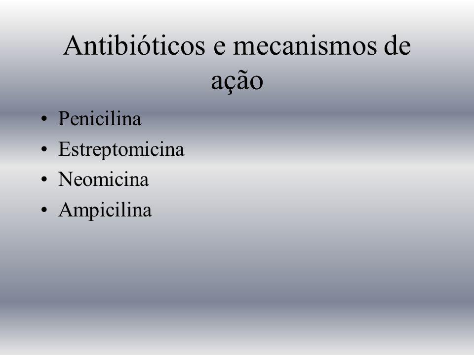 Antibióticos e mecanismos de ação