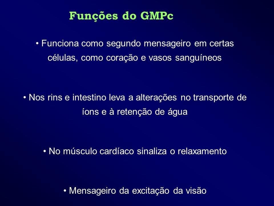 Funções do GMPc Funciona como segundo mensageiro em certas células, como coração e vasos sanguíneos.