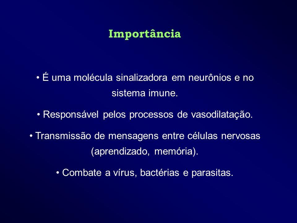 Importância É uma molécula sinalizadora em neurônios e no sistema imune. Responsável pelos processos de vasodilatação.