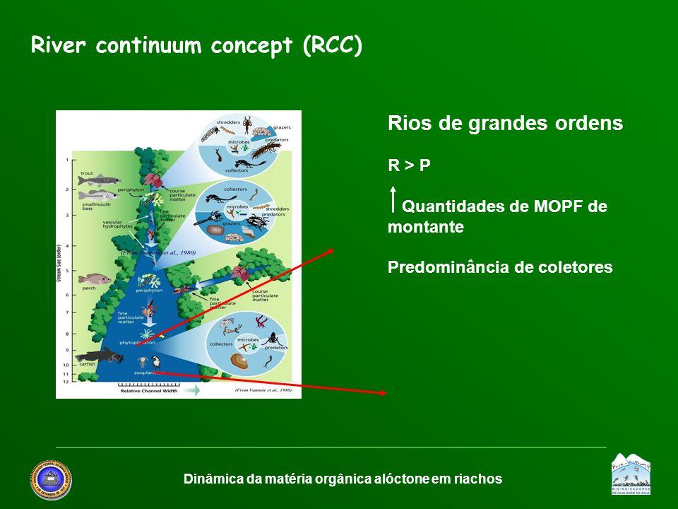 Dinâmica da matéria orgânica alóctone em riachos
