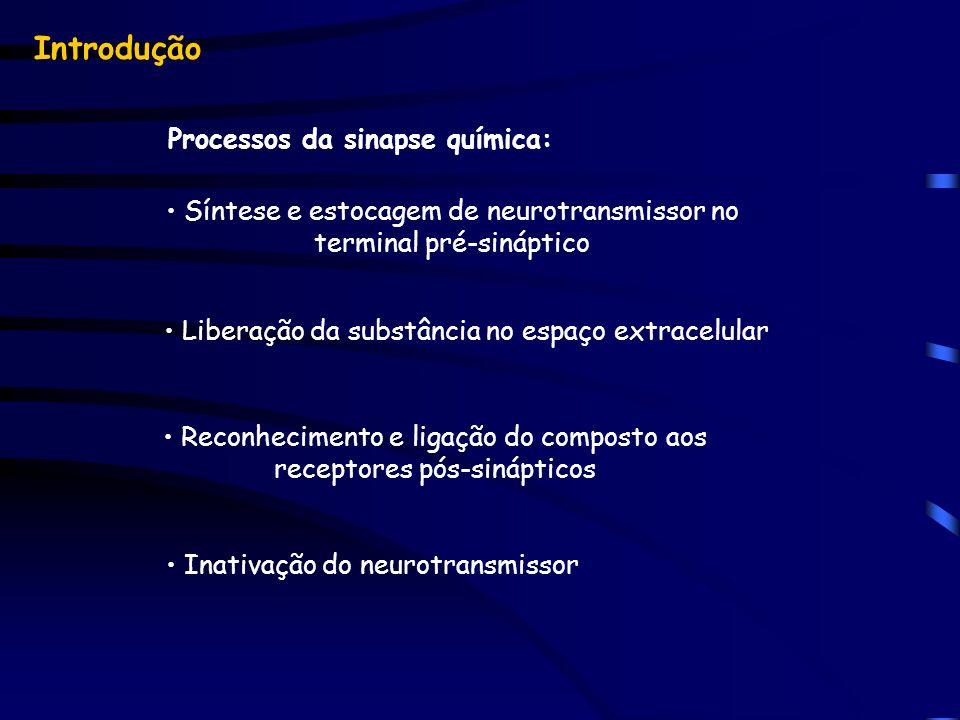 Introdução Processos da sinapse química: