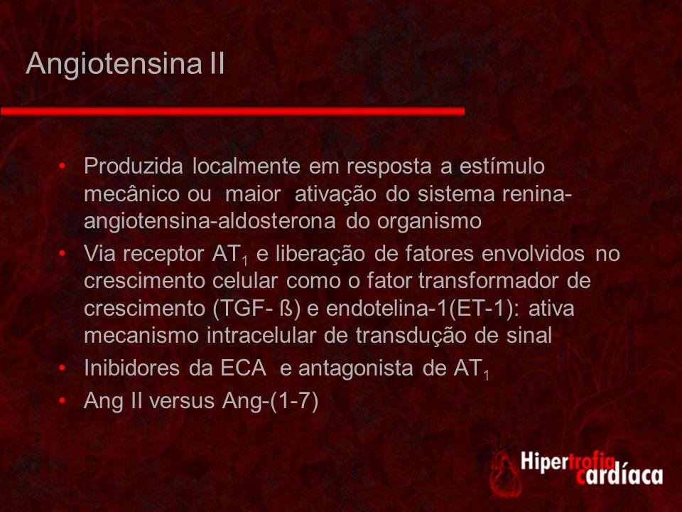 Angiotensina II Produzida localmente em resposta a estímulo mecânico ou maior ativação do sistema renina-angiotensina-aldosterona do organismo.