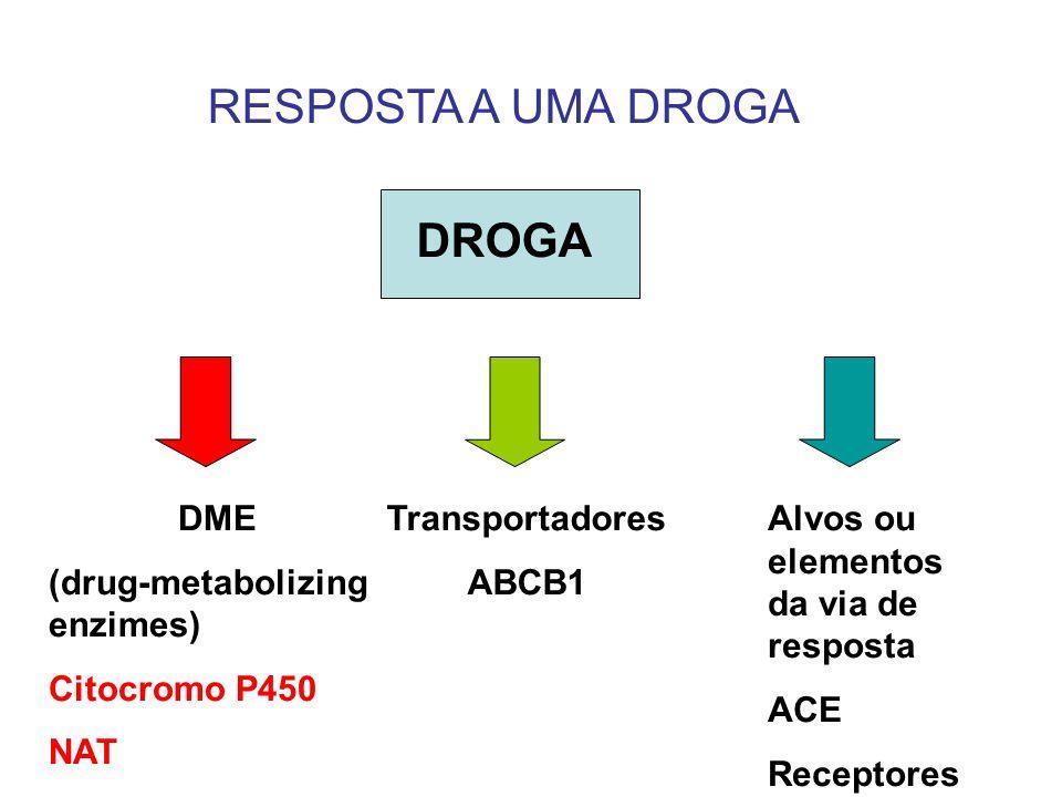 RESPOSTA A UMA DROGA DROGA DME (drug-metabolizing enzimes)