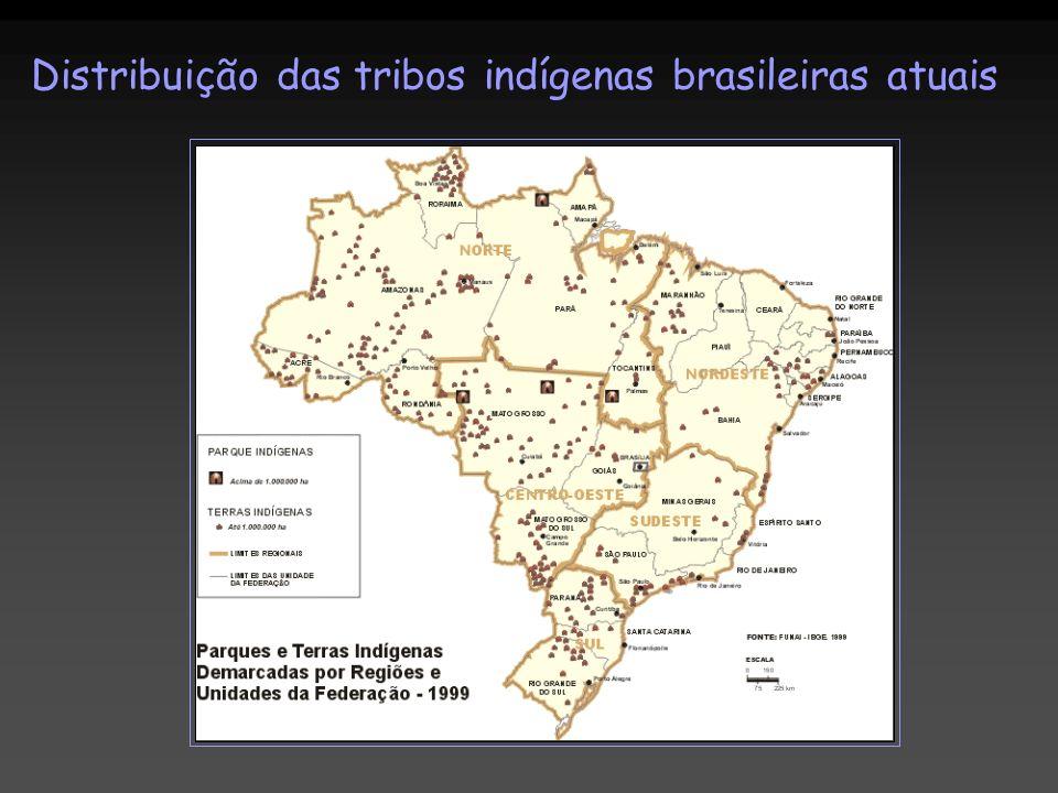 Distribuição das tribos indígenas brasileiras atuais