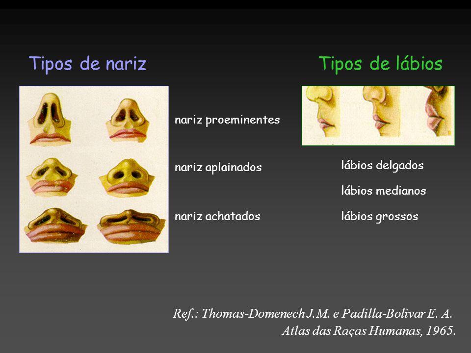 Tipos de nariz Tipos de lábios