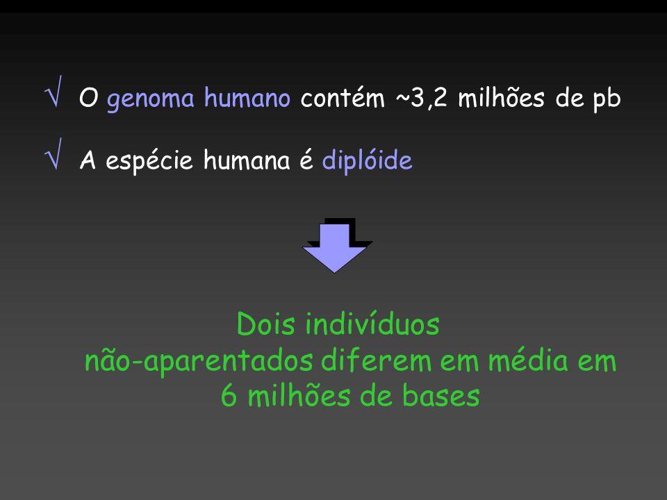 Dois indivíduos não-aparentados diferem em média em 6 milhões de bases