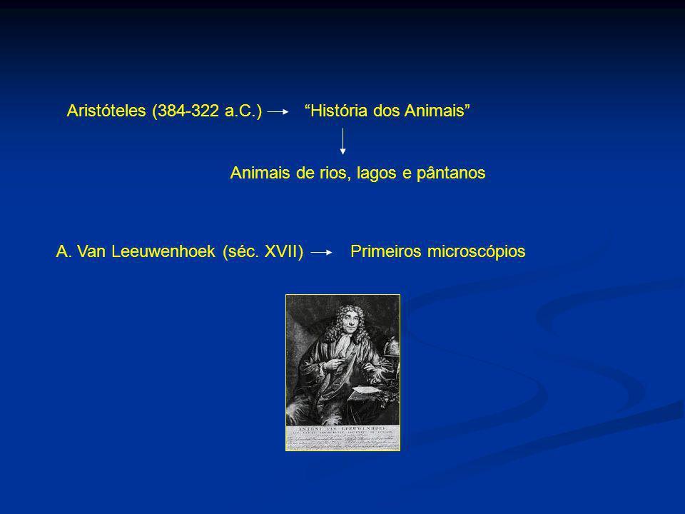 Aristóteles (384-322 a.C.) História dos Animais