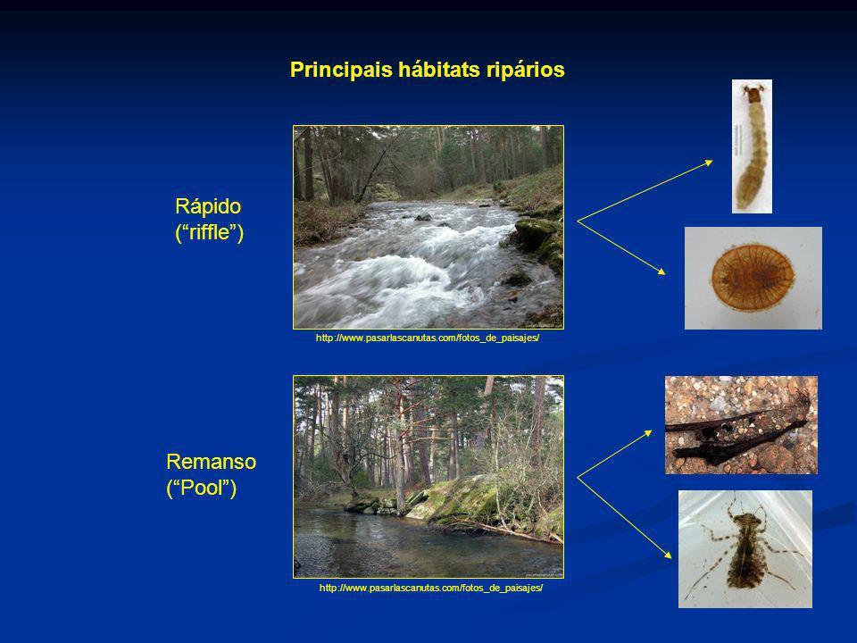 Principais hábitats ripários
