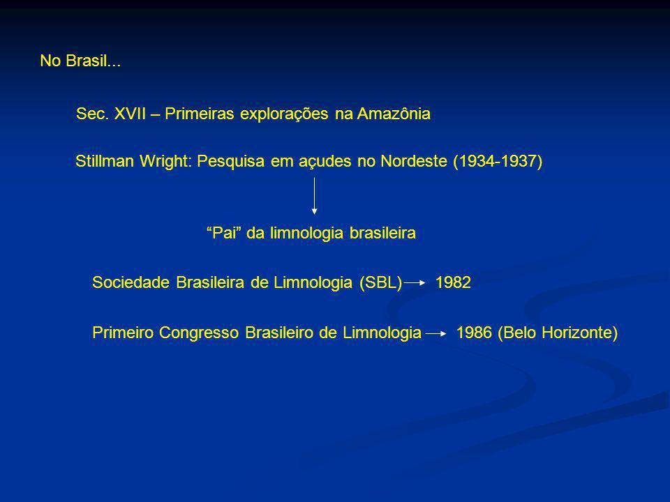 No Brasil... Sec. XVII – Primeiras explorações na Amazônia. Stillman Wright: Pesquisa em açudes no Nordeste (1934-1937)