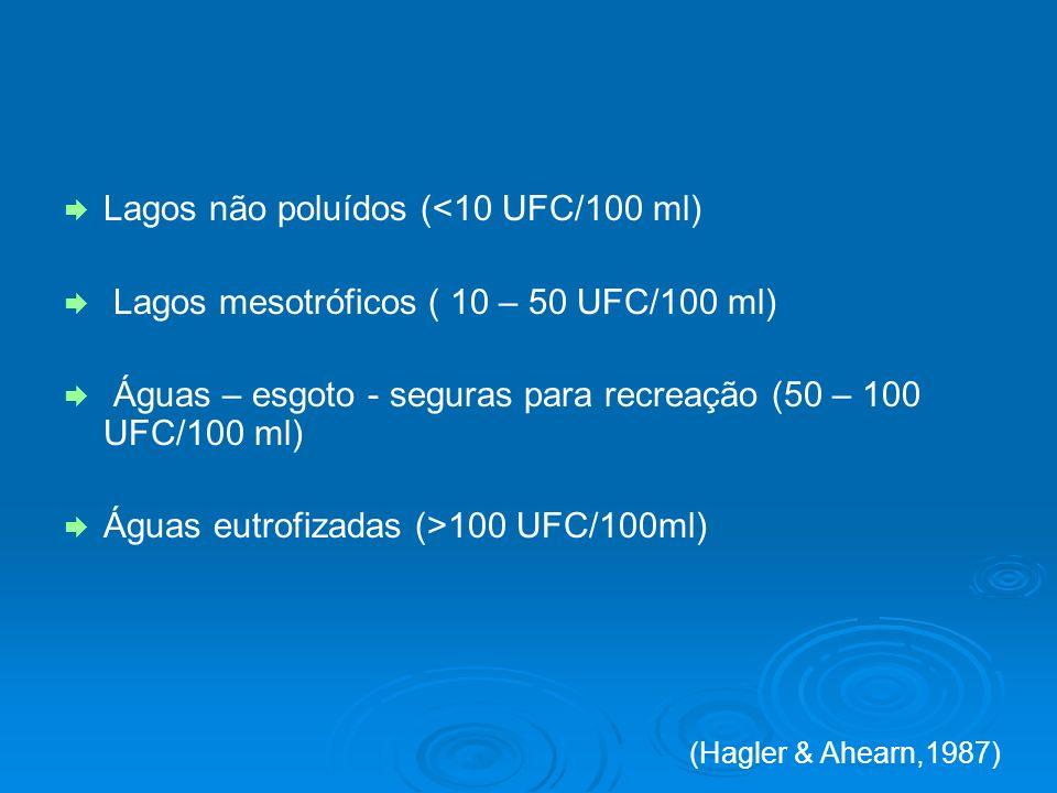 Lagos não poluídos (<10 UFC/100 ml)