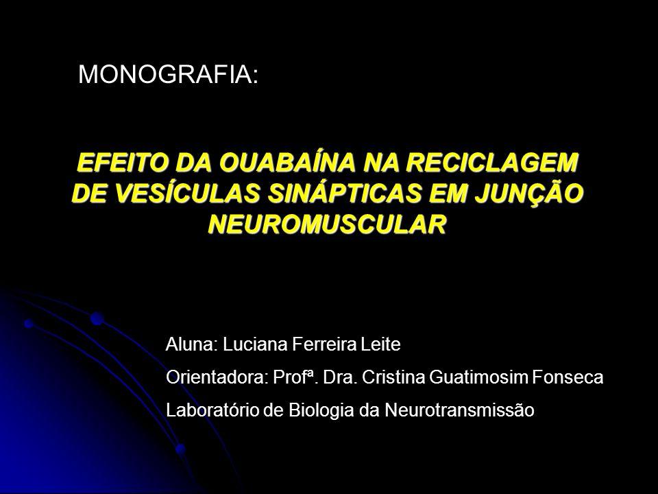 MONOGRAFIA: EFEITO DA OUABAÍNA NA RECICLAGEM DE VESÍCULAS SINÁPTICAS EM JUNÇÃO NEUROMUSCULAR. Aluna: Luciana Ferreira Leite.
