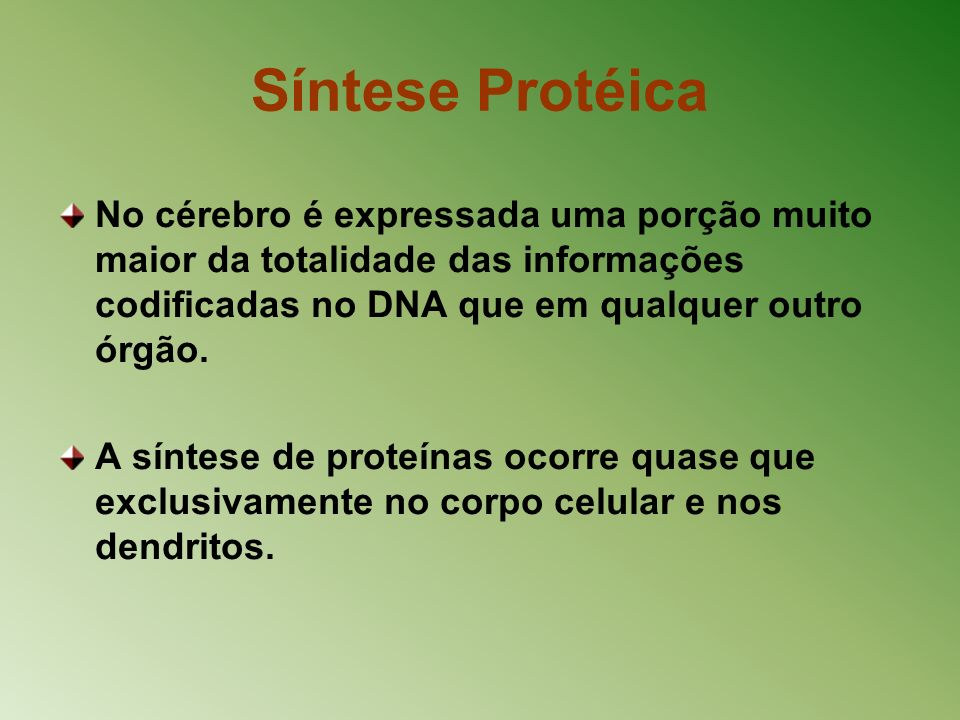 Síntese ProtéicaNo cérebro é expressada uma porção muito maior da totalidade das informações codificadas no DNA que em qualquer outro órgão.