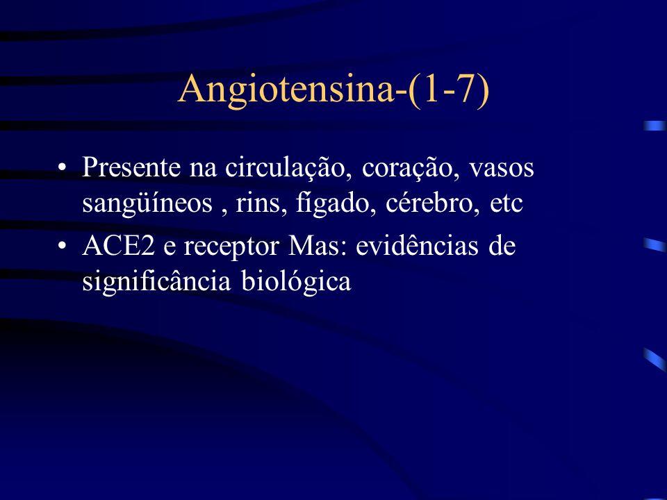 Angiotensina-(1-7) Presente na circulação, coração, vasos sangüíneos , rins, fígado, cérebro, etc.