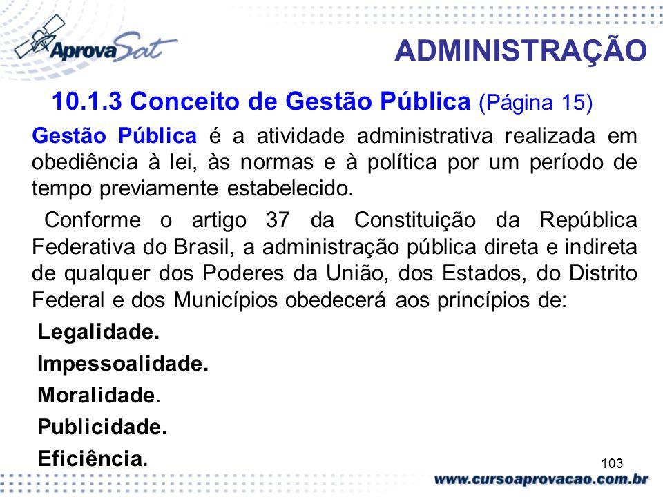 10.1.3 Conceito de Gestão Pública (Página 15)