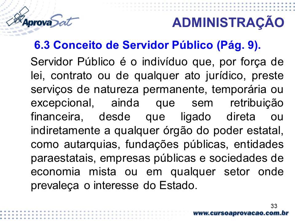 6.3 Conceito de Servidor Público (Pág. 9).