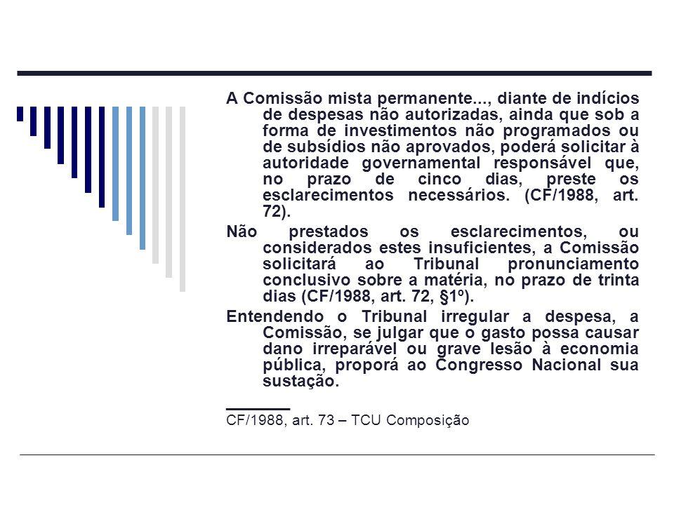 A Comissão mista permanente