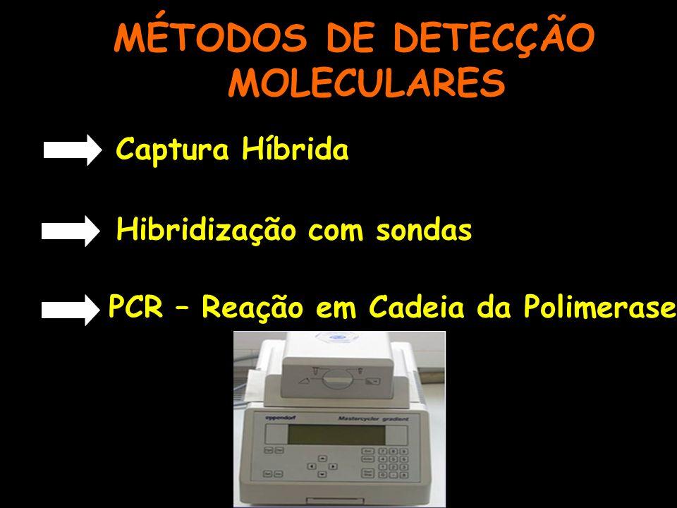 MÉTODOS DE DETECÇÃO MOLECULARES Captura Híbrida