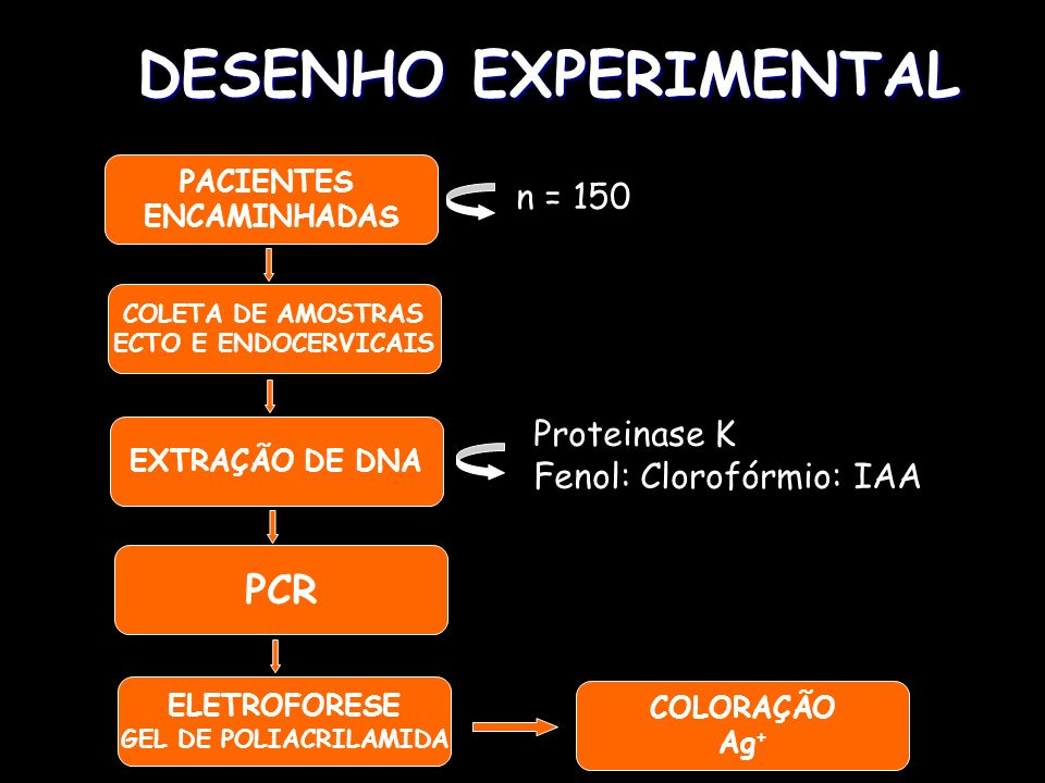 DESENHO EXPERIMENTAL PCR n = 150 Proteinase K Fenol: Clorofórmio: IAA