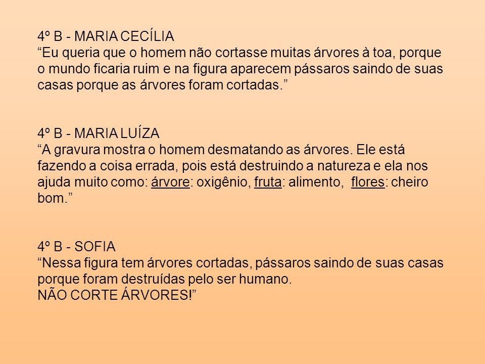 4º B - MARIA CECÍLIA
